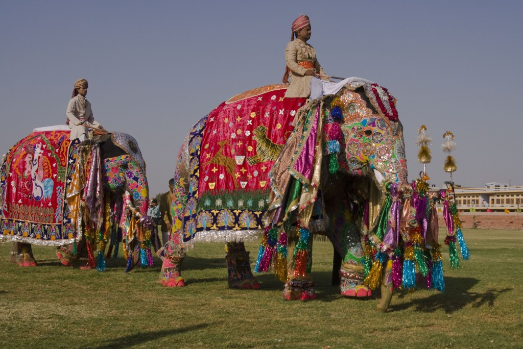 Decorated-elephants-on-parade-at-the-annual-elephant-festival-in-Jaipur-India-