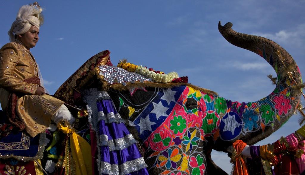Elephant_Festival_-_Jaipur