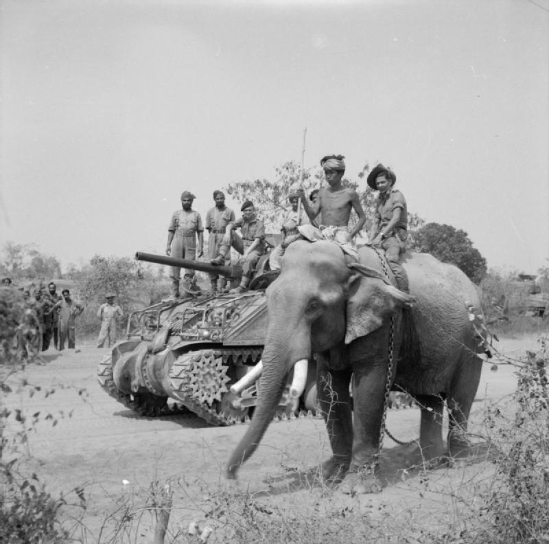 British_commander_and_Indian_crew_encounter_elephant_near_Meiktila_2